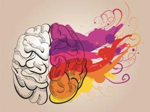 Générations Y : travailler avec des cerveaux droits